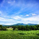 Whistling Ridge Farm